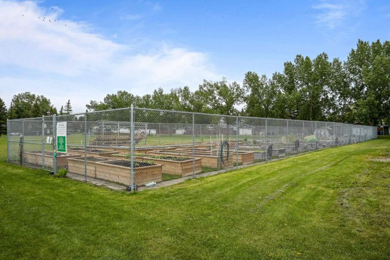 Check out our community garden